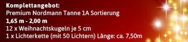 Komplett Angebot Tannenbaum mit Kugeln 1,65m - 2,00m